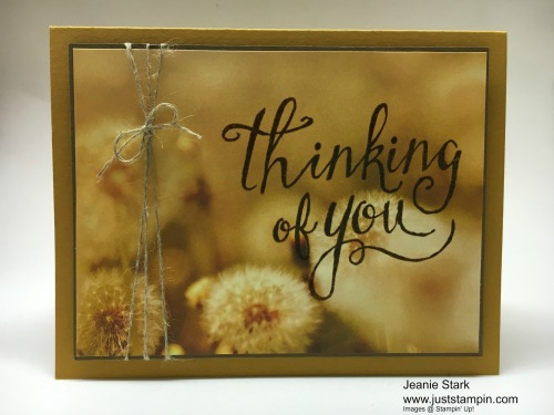 Stampin Up Time of Year Thinking of You card idea with Serene Scenery Designer Series Paper - Jeanie Stark StampinUp