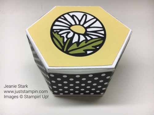 Stampin Up Window Box Thinlits ideas - Jeanie Stark StampinUp